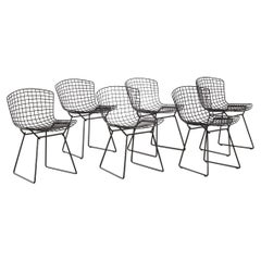 Harry Bertoia, Set of Six Chairs for Knoll USA, 1952