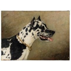 Antique Painting Portrait of a Great Dane by Zélia Klerkx Oil on Canvas