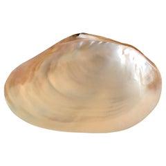 Large Capiz Shell Decorative Dish