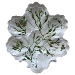 Porcelain Oyster Plate with Seaweeds Limoges, circa 1900