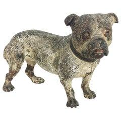 Vienna Cold Painted Bronze Bulldog, Antique Dog Figure
