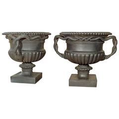 Pair of Cast Iron Urns with Entwined Serpent Handles