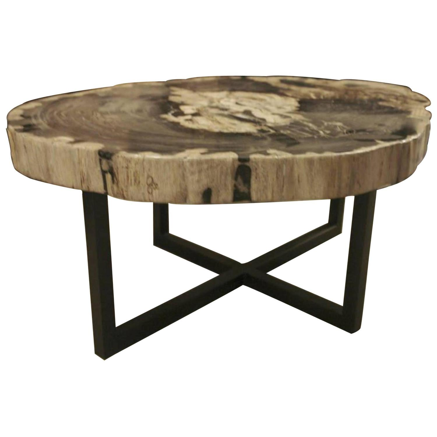 Petrified wood extra large extra thick coffee table for Large wood coffee table