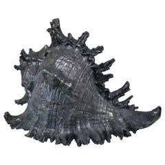 Italian 1960s Pewter Shell