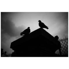 Black and White Photo of Paris by Joachim Lapotre