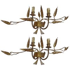 Pair of French 1940s Handmade and Gilt Wrought Iron Sconces
