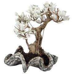 Tree Made Up of Natural Plant and Leaves in White Ceramic