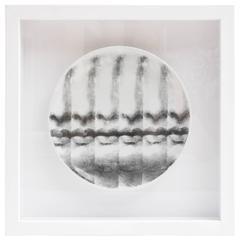 "Framed Fornasetti ""Tema E Variazione"" Plate"