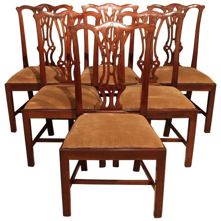 six mahogany regency dining chairs circa 1820 at 1stdibs