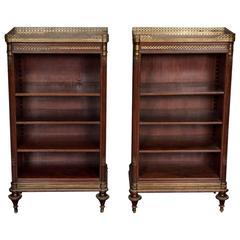 Pair of French 19th Century Bookshelves