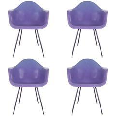 Rare Purple Fiberglass Chairs Charles Eames for Herman Miller