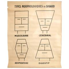 Large Early 20th Century French Morphopsychology Chart