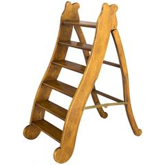 19th Century French Library Ladder