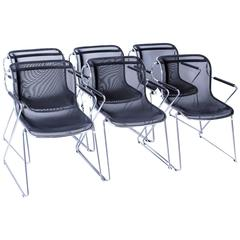 Set of Six Chairs, Penelope, Charles Pollock for Castelli