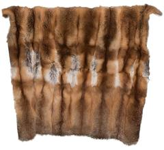 Beautiful Red Fox Throw