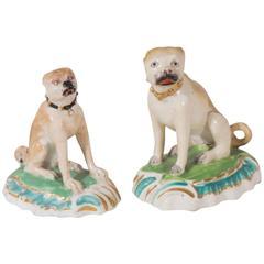 Two Excellent Derby Porcelain Pugs