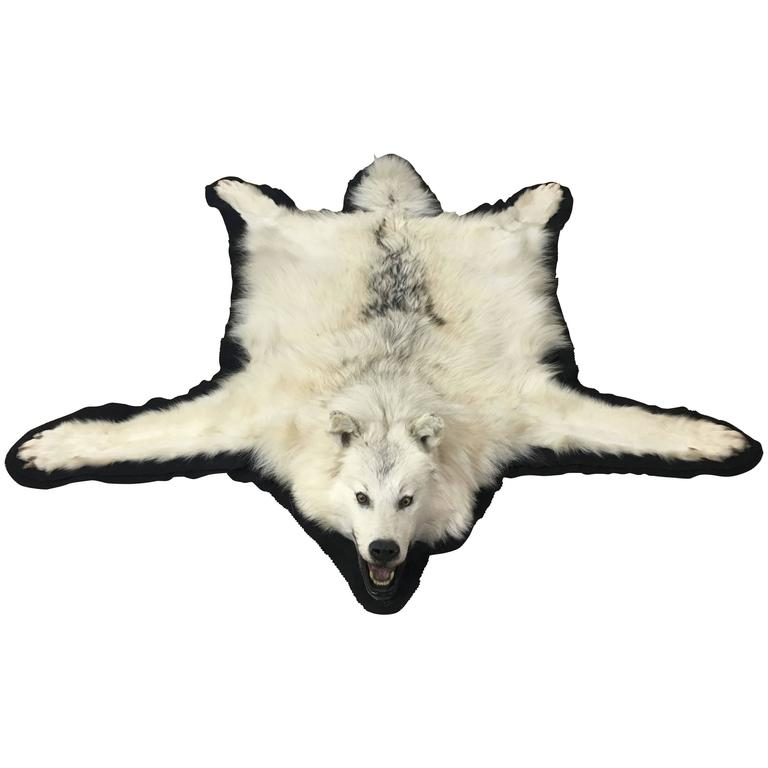 Vintage White Wolf Skin Rug For Sale At 1stdibs