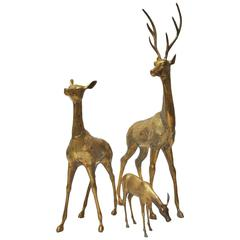 Very Large Brass Deer Family