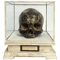 Important and Rare Italian Memento Mori Plaster Sculpture