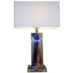 Pair of Petrified Wood in Lucite, Table Lamp