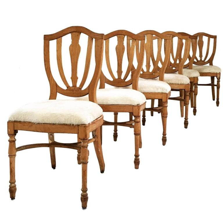 Vintage Maple Dining Chairs In Brazilian Ivory Cowhide Set Of Six For Sale A