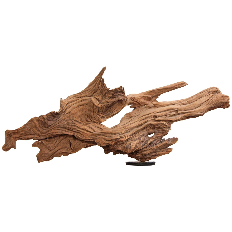 driftwood sculpture organic modern at 1stdibs. Black Bedroom Furniture Sets. Home Design Ideas