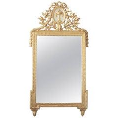 19th Century Louis XVI Giltwood Mirror
