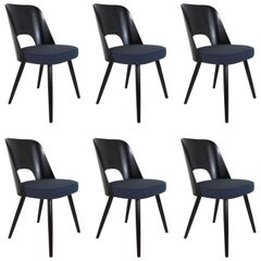 Set of Six Modernist Dining Chairs by Oswald Haerdtl, Ton, 1950s