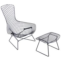 Bird Chair by Hary Bertoia for Knoll