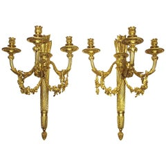 Pair of French 19th-20th Century Louis XVI Style Three-Light Wall Sconces