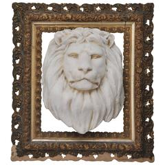 Vintage Cast Lion Framed in Antique Gilded Frame