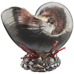 Italian Silver Coated Nautilus Shell on a Naturalistic Base with Red Coral
