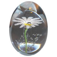 Paperweight Egg Daum Daisy Flower