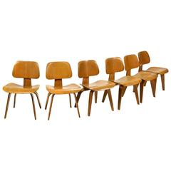 Eames DCW Chairs Set of Six Early Evans Production