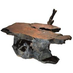 California Redwood Burl Coffee Table