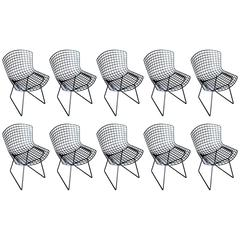 Bertoia Side Chairs by Knoll