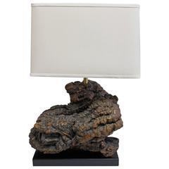 Burl Wood Lamp