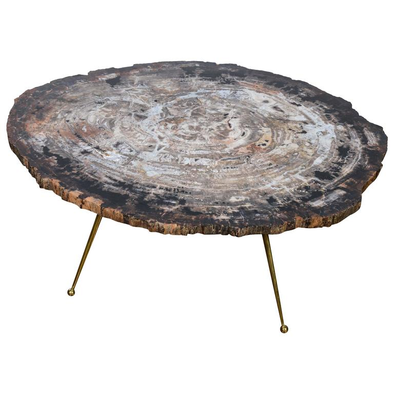 free shape petrified wood coffee table at 1stdibs