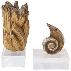 Two Gilt Fragments on Acrylic Bases
