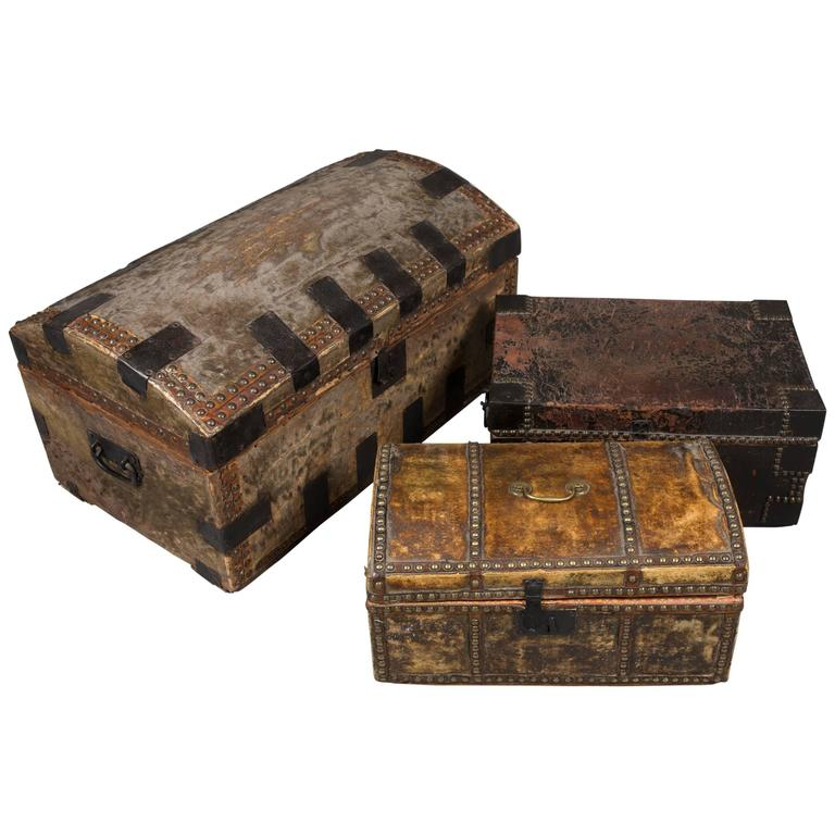 Collection of 19th Century Hide and Leather Trunks 1