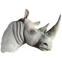 Replica of a White Rhino Trophy Head