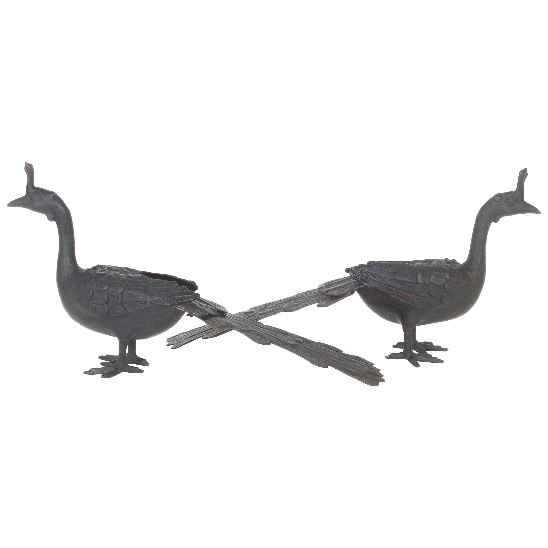 Pair of Cast Iron Peacocks