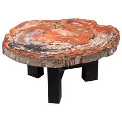 Fossilized Wood Table by Ado Chale, circa 1965