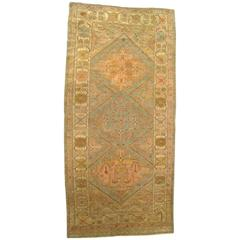 Antique N.W. Persia Decorative Oriental Carpet, Small Runner Size in Soft Colors