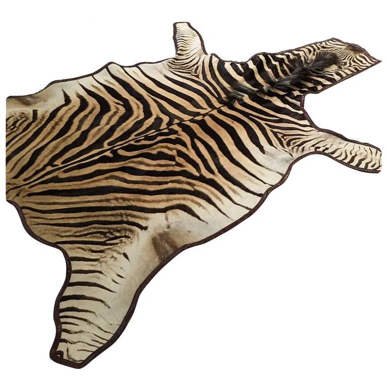 Zebra Hide Rug Trimmed In Leather At 1stdibs