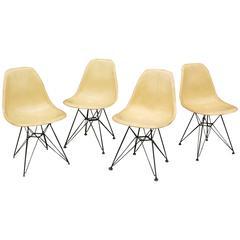 Pleasing Set Of Four Eames For Herman Miller Fiberglass Side Chairs Eiffel Tower Bases Creativecarmelina Interior Chair Design Creativecarmelinacom