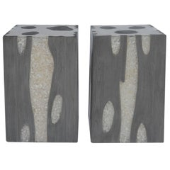 Pair of Resin and Wood Stools/Side Tables