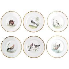 Six B&G, Bing & Grondahl Hand-Painted Plates with Bird Motifs, circa 1934