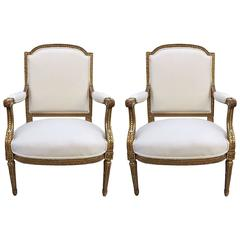 Pair of French Louis XVI Style 19th Century Giltwood Carved Chairs