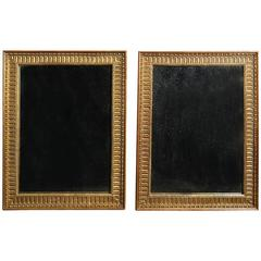 Pair of 20th Century George III Style Giltwood Mirrors
